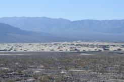 Mesquite sand dunes from afar