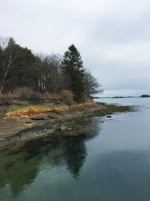 Mackworth Island, Falmouth (7)