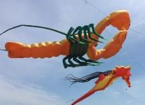 Bug Light Park Kite Festival