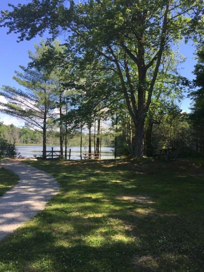 Donnabeth Lippman Park