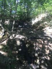 Fore River Sanctuary (6)