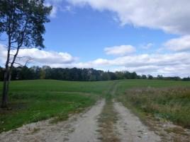 pineland-farm-10