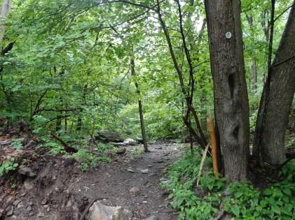 Fishkill Ridge Trail
