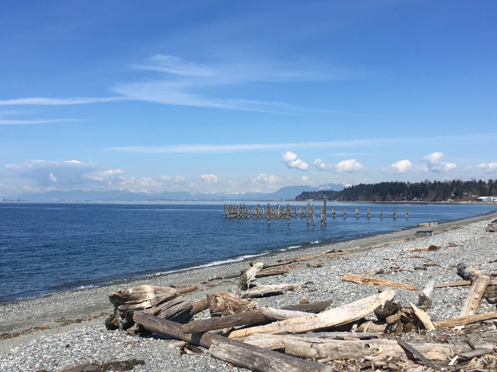 Looking NNW toward Vancouver from Lighthouse Park in Point Roberts