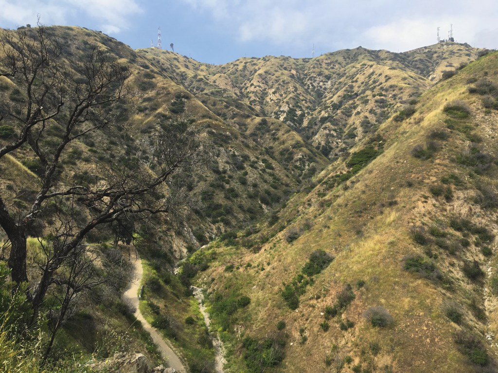 Part of the Wildwood Canyon hike