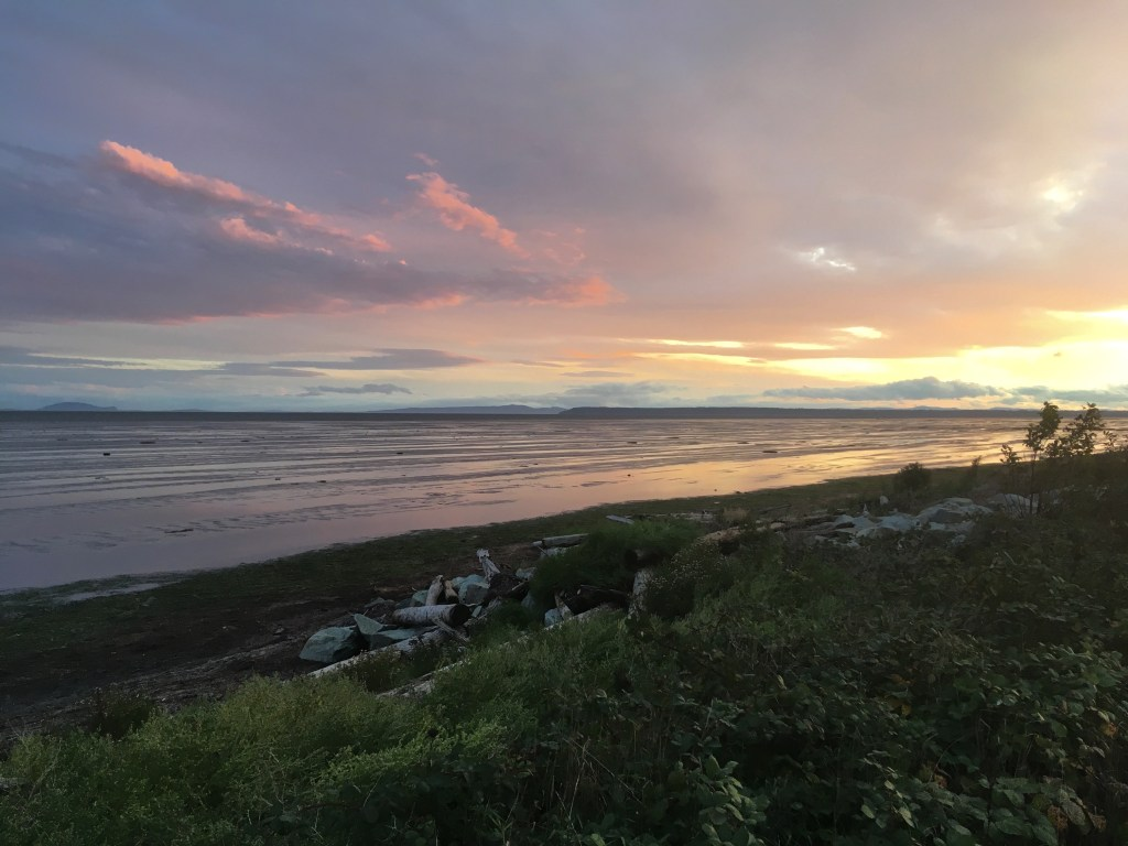 The sun sets at Boundary Bay on a great day of birding