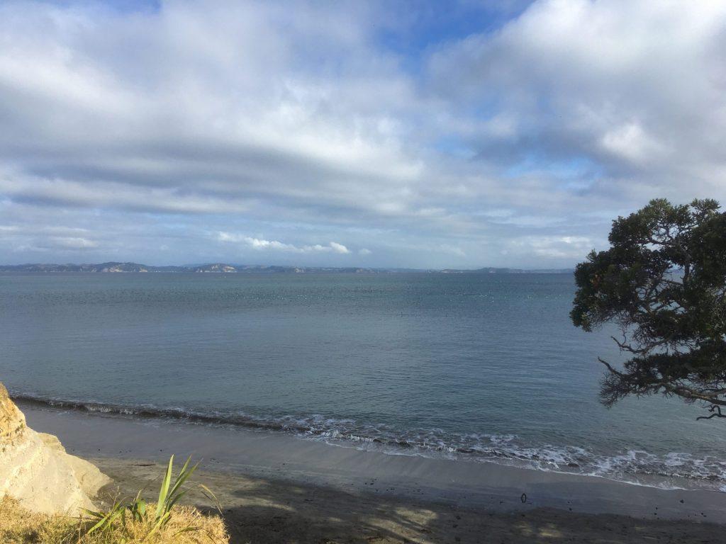 A distant feeding frenzy off the coast
