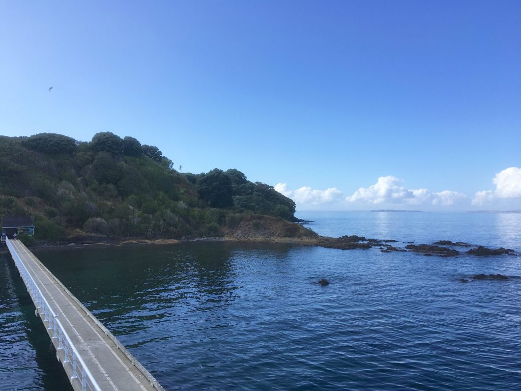 Arriving at Tiritiri Matangi