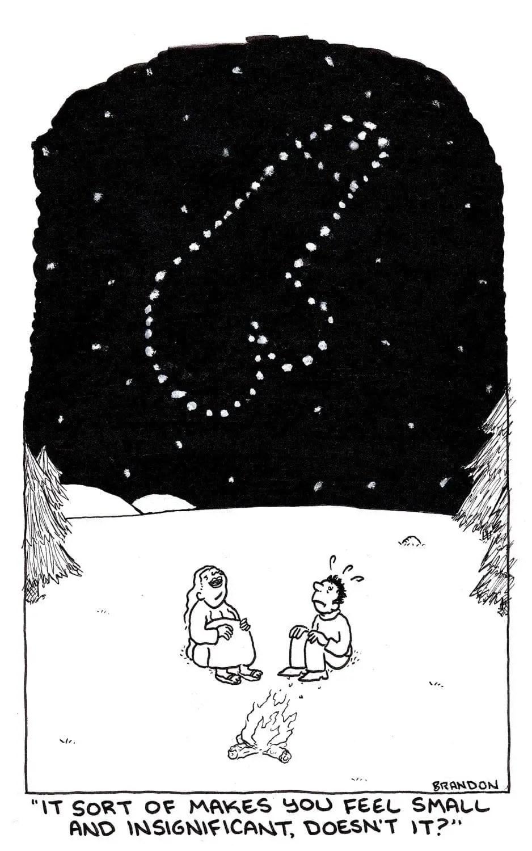 penis-stars
