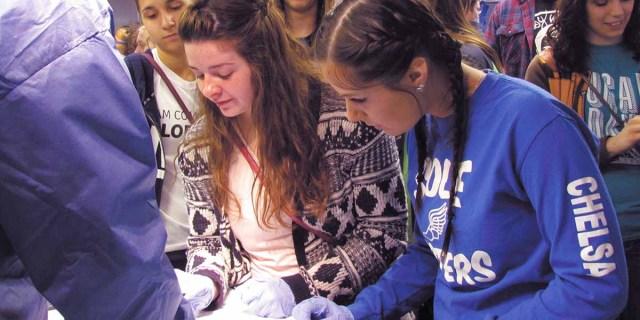 Crestwood HS student Allison investigates the anatomy of a cadaver arm with orthopedic resident Dr. Drew Wroblewski