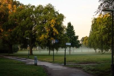 Misty morning.