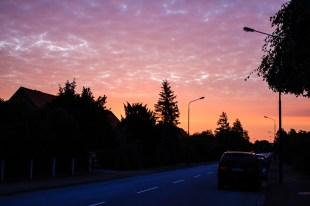 Rosy dawn.