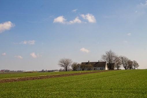 Traditional Scanian landscape on Österlen.