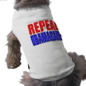 cats_dogs_obamacareE