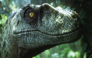 dinosaur_zooC