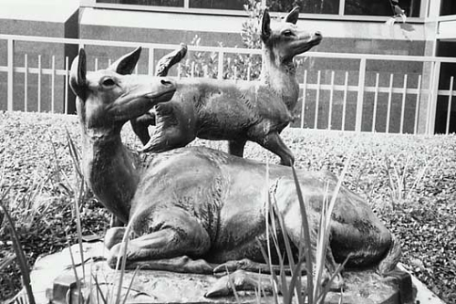 """""""Red Fawn and Red Doe"""" in Houston."""