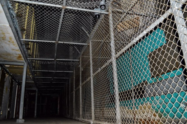 The prisoners in North Hall were surrounded by fencing for most of their days.