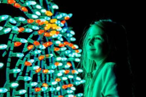 Oglebay winter festival of lights