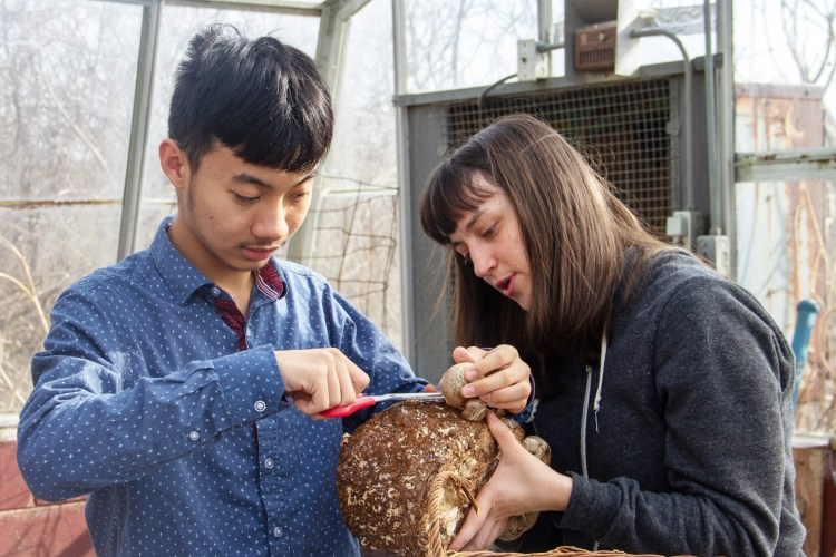 Two students with fungi.