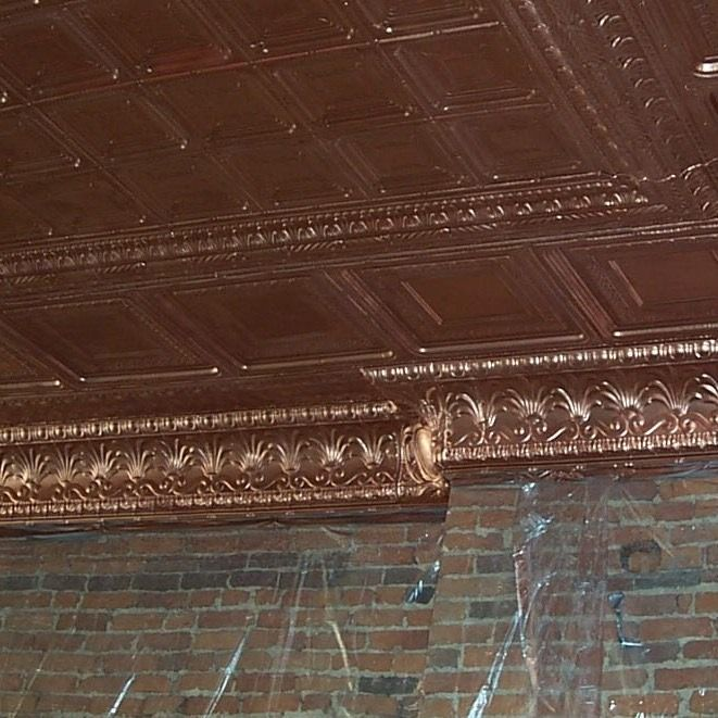 Later Alligator Ceiling