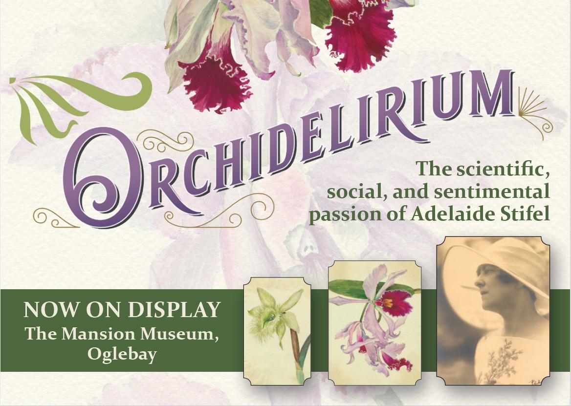 orchid exhibit Oglebay Institute