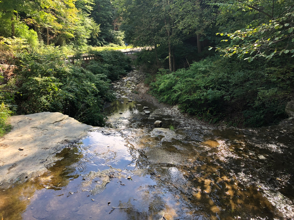 Oglebay Walking Trail