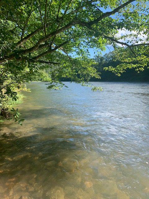 Greenbriar River