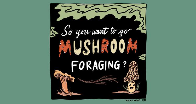 Mushroom Comic