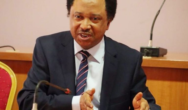 Let Us See Evidence When You Kill Bandits – Senator Shehu Sani Tells Buhari