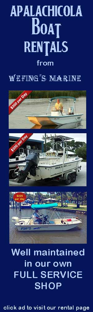 Apalachicola Boat Rentals by Wefings Marine