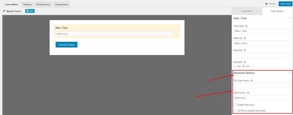 Advanced field options for WordPress form date-time field