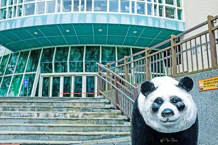 Taipei Zoo - The Must Visit Zoo in Taiwan