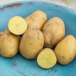 We Grow Carola Potatoes
