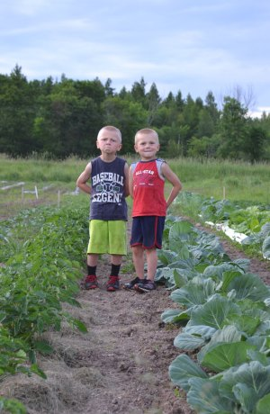 We Grow Healthy Kids