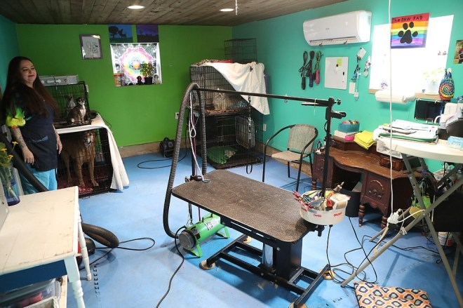 The grooming area at The Paw Pad. - Photo by Richard Rasmussen of The Sentinel-Record