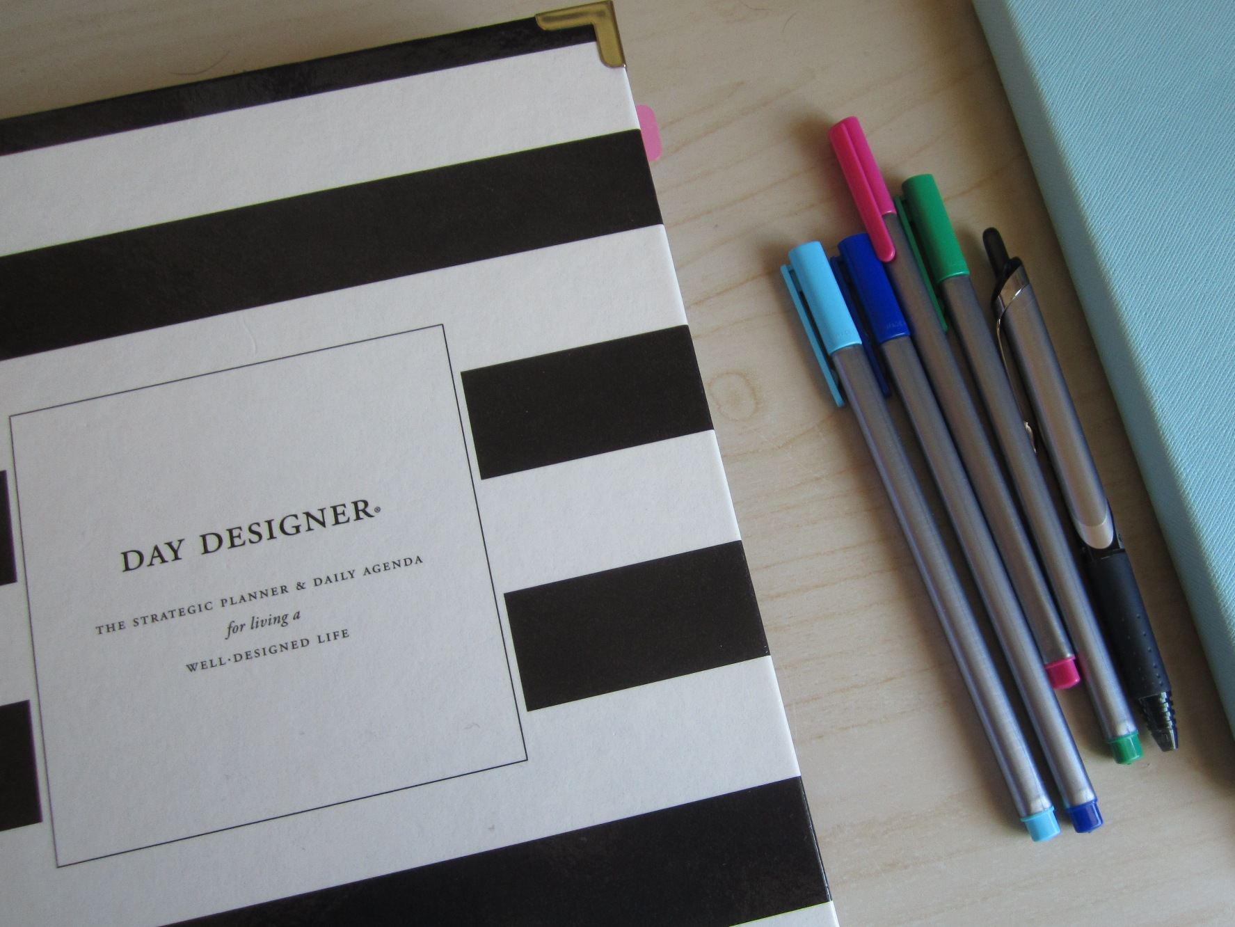 photograph regarding Day Designer Planners identified as Working day Designer for Blue Sky Day by day Planner Examine