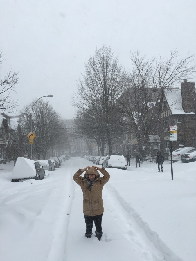 winter snow storm jonas nyc queens