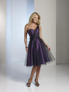 1950s style tulle dress