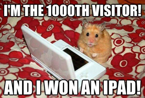 Hamsters: Still less gullible than Paul Elam