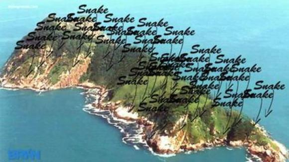 DailyMotion has helpfully labeled some of Snake Island's most notable features