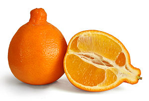 Minneola is a cross breed between manderins an...
