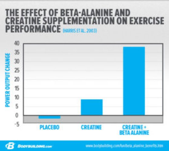 Beta Alanine Dosage Guide