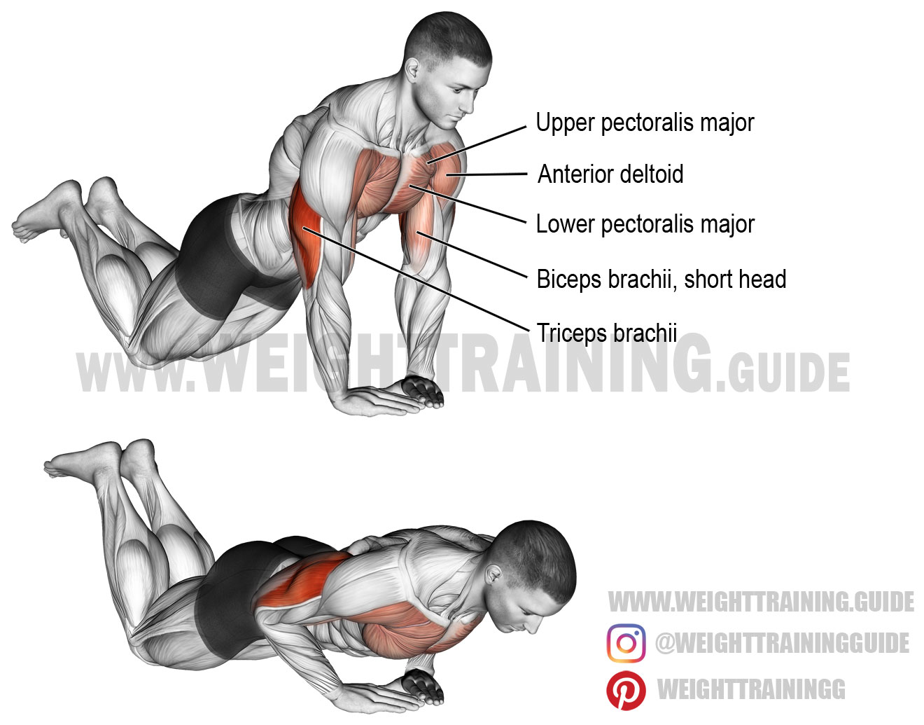 Diamond Push Up On Knees Exercise Instructions And Video