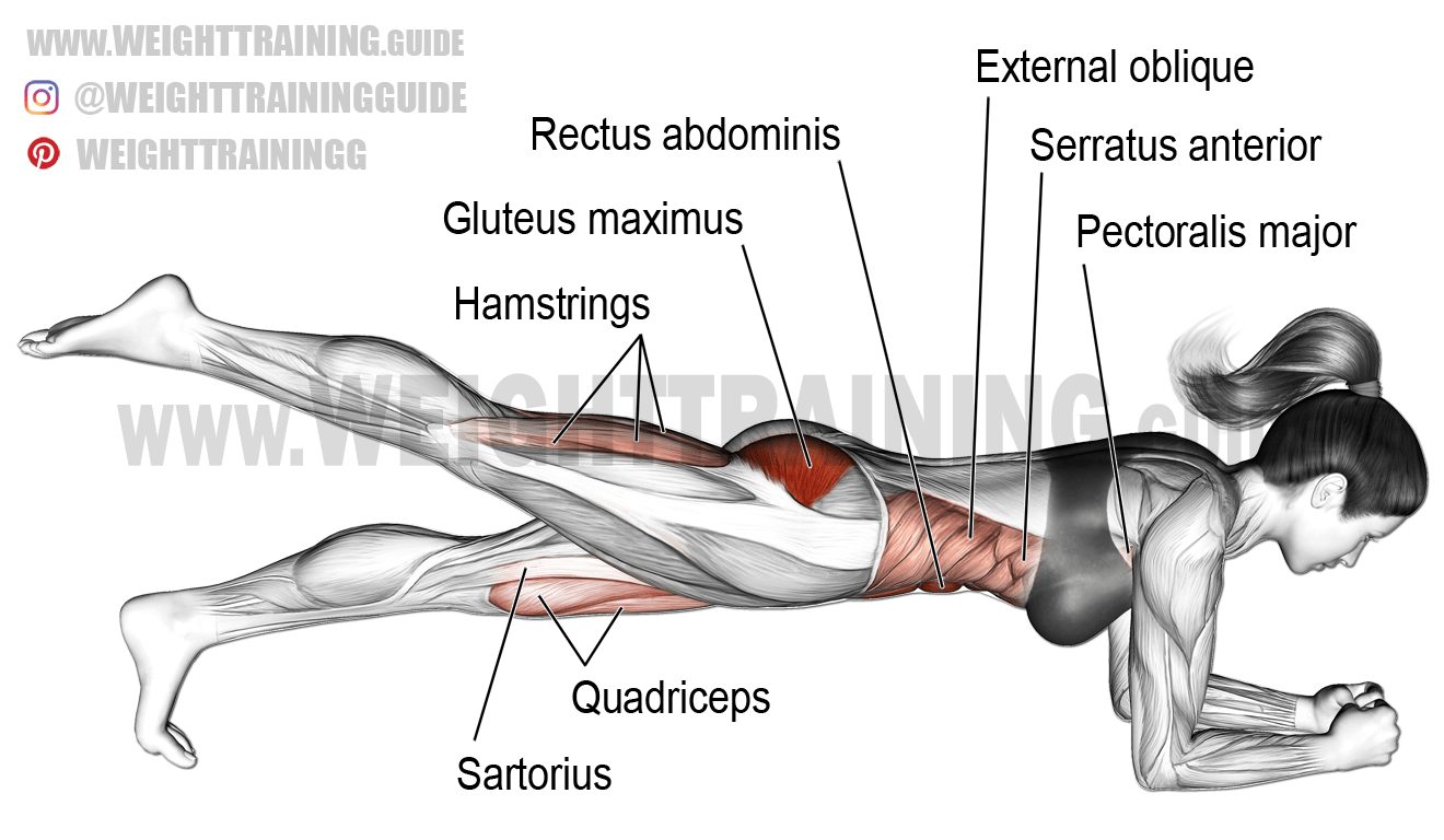 Feet Muscles Diagram