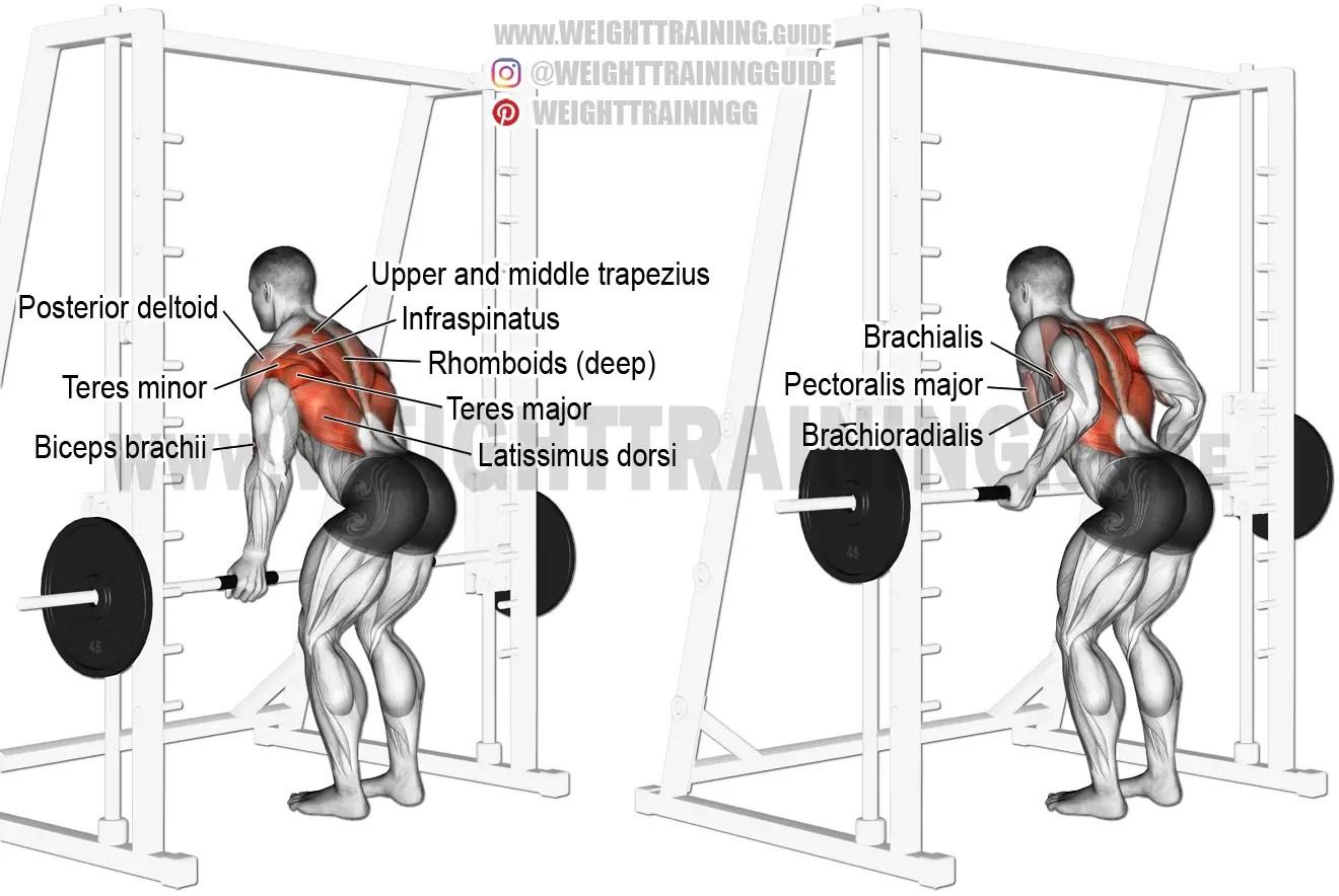 Smith Machine Underhand Yates Row Exercise Instructions