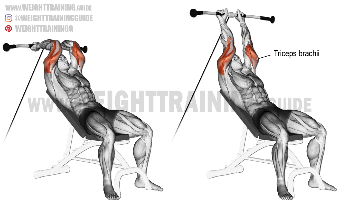 Incline Cable Triceps Extension Exercise Instructions And