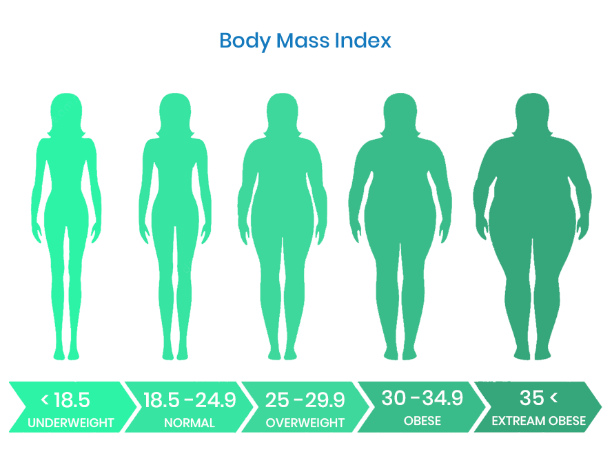Understanding BMI & BMR of your body