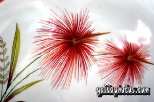 Weihnachtskarten  kostenlos, Neujahr Silvester, Feuerwerk, Blumen