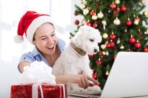 Weihnachtsmann-bewerbung