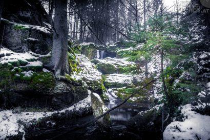 Feldaisttal_Winter_Pregarten_003